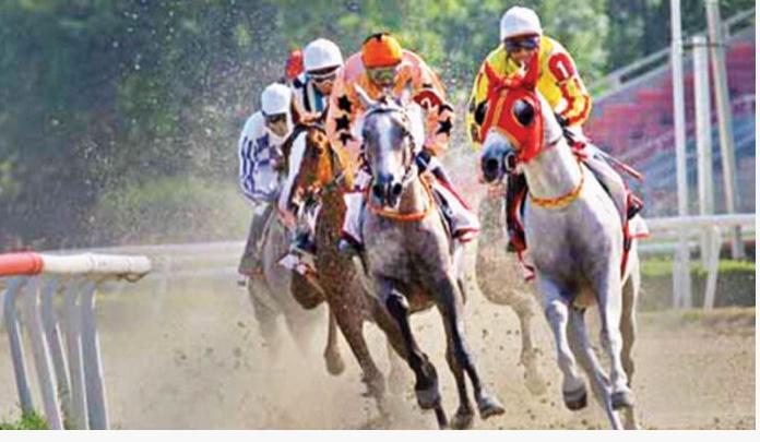 Seyit'in bu yarış hakkındaki yorumu